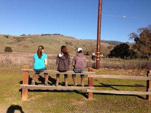 cowgirls on fence